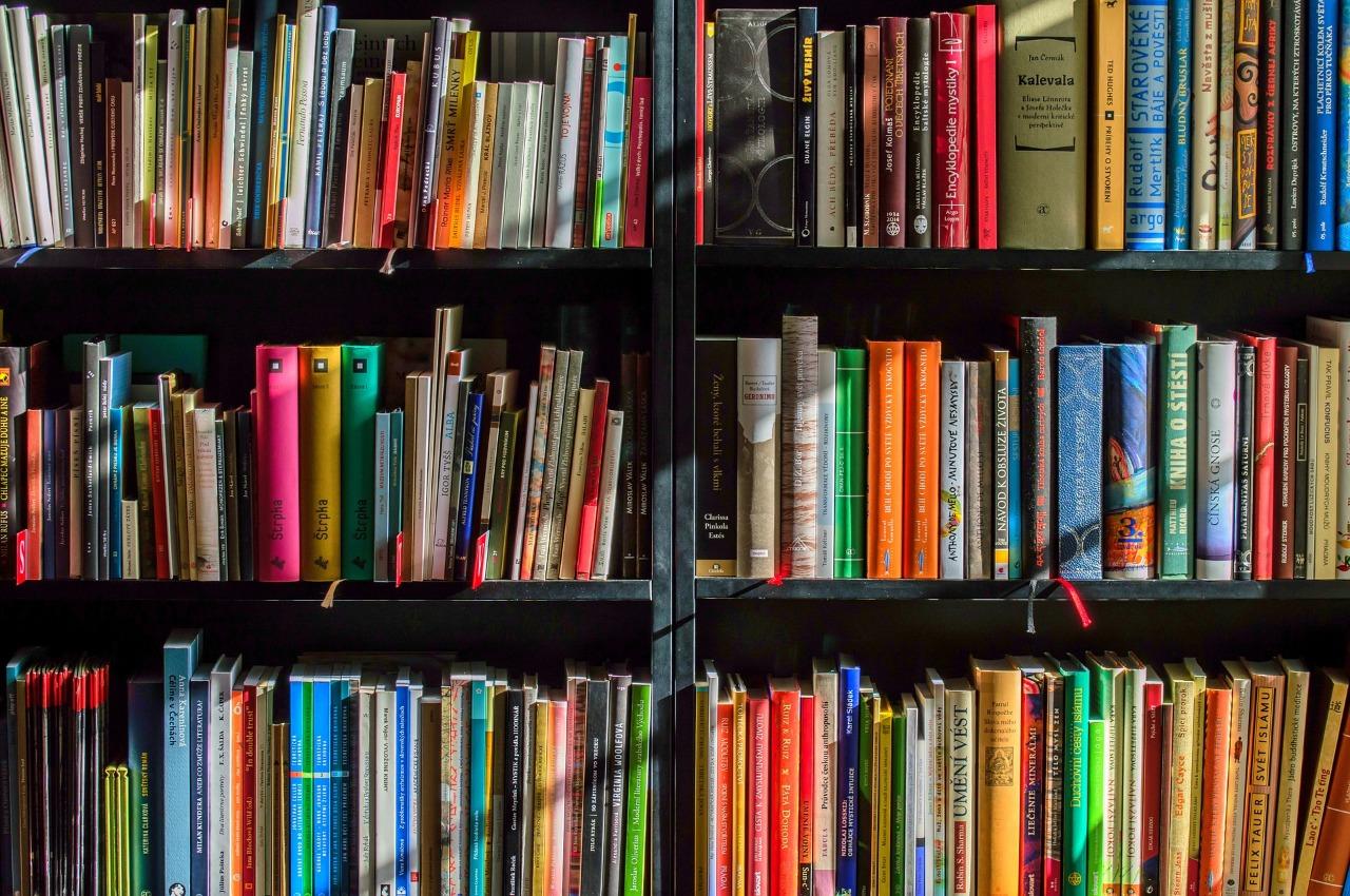 Que tal dedicar um tempo para uma boa leitura?